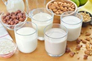 novenyi-tejek-magok